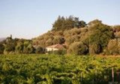 Agriturismo L'antica Vigna